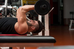 Young Man Working Out Triceps Royalty Free Stock Image