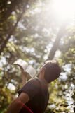 Young man worship. A back view view of young man holding up bible to sun in forest Royalty Free Stock Photography