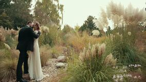 Young married couple groom with beard and black suit hugs their bride kisses her stock video