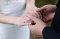 Young married couple holding hands, ceremony wedding day.  Royalty Free Stock Photos