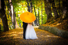 Young married couple in love kissing under umbrella. In side a forest park autumn Royalty Free Stock Image