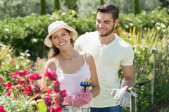 Young married couple seedling garden plants Royalty Free Stock Photo