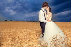 Young married couple in wheat field Royalty Free Stock Photo