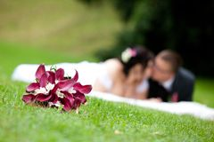 Young marrieds Royalty Free Stock Images