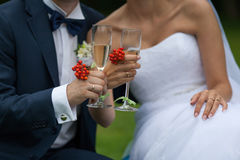 Young marrieds toast. A couple of young marrieds are holding glasses with a champagne Royalty Free Stock Photo