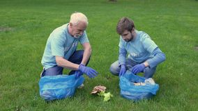 Young and mature men collecting trash in garbage bag giving high five, teamwork. Stock footage stock video footage