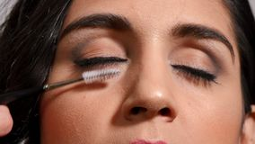 Stylist combing eyelashes with an eyeliner and an eyebrush stock video footage