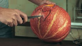 Young men carves jack o lantern out of pumpkin on a kitchen table using knife. Medium shot stock video