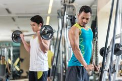 Young man exercising triceps pushdown next to his friend. Young men exercising triceps pushdown at the rope cable machine next to his friend during upper-body Stock Photo
