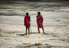 Young men Masai in ethnic clothes walking along the beach during low tide. Stock Image
