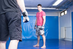 Young men at mma training Royalty Free Stock Image