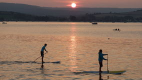 Young men on paddle boards at Sunset time. Two young men enjoying paddle boarding on the Exe estuary in Exmouth Devon UK #Exmouth Royalty Free Stock Image