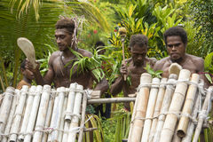 Young men playing drums, Solomon Islands Royalty Free Stock Photography