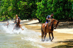Young men riding horses on the beach on Taveuni Island, Fiji Royalty Free Stock Photos