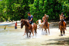 Young men riding horses on the beach on Taveuni Island, Fiji Stock Photo