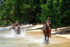 Young men riding horses on the beach on Taveuni Island, Fiji Stock Images