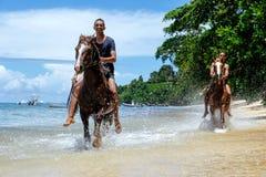 Young men riding horses on the beach on Taveuni Island, Fiji Stock Photos
