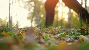 Young men are running on fallen autumn leaves in the forest against shining sun in slowmotion. 1920x1080