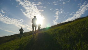 Young men running over green hill over blue sky background. Male athletes is jogging in nature at sunset. Sport runners stock footage