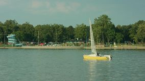 Young men sailing on the lake stock video footage