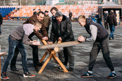 Young men sawing a tree trunk on a traditional holiday fun at  C Royalty Free Stock Photography