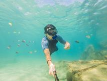 Young men snorkeling exploring underwater coral reef landscape background in the deep blue ocean with colorful fish and. Young man snorkeling exploring stock image