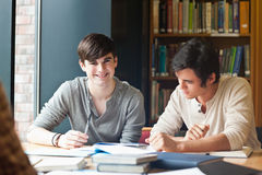 Young men studying. In a library Stock Photos