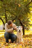 A young men walks in autumn park with a Labrador. Guy playfully stock images