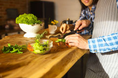 Young man and woman cooking salad together at kitchen. Young men and women cooking vegetable salad together at kitchen Stock Image