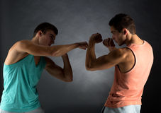 Young men wrestling Royalty Free Stock Images
