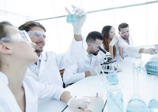 Young microbiologists working in the laboratory. Royalty Free Stock Photo