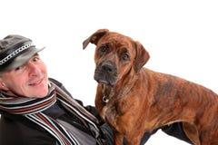 Young mixed-breed / boxer dog Royalty Free Stock Photos
