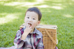 Young Mixed Race Boy Eating in Park Near Picnic Basket Royalty Free Stock Photo