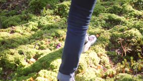 Young Mixed Race Female Walking on Green Moss. Asian Girl Hiking in Beautiful Autumn Forest. Lifestyle Slowmotion 4K. Footage. Karelia, Russia stock footage