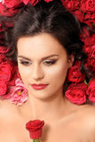 Young model lying in red roses Stock Photos
