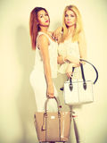 Young models with handbags. Royalty Free Stock Photography