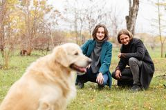 Young couple sitting next to a labrador in an autumn park. Outside. royalty free stock photos