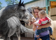 Young mom helping son feed horse. Stock Image