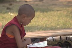 A young monk at  Bodhgaya Stock Images