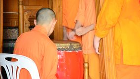 Young monk hitting the largest drum for pray in the evening stock footage