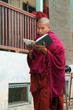 Young monk reading a book at Mahagandayon Monastery on Mandalay, Stock Photos