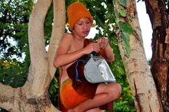 Chiang Mai, TH: Young Monk in Tree Royalty Free Stock Image