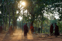 Young monks clean the yard Royalty Free Stock Photos