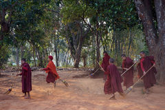 Young monks clean the yard Royalty Free Stock Photography