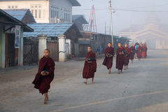 Young monks get food offerings in early morning Stock Images
