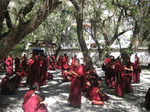 Young monks. Monks rest in the yard of the monastery after school Royalty Free Stock Photo