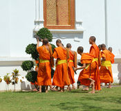Young monks wearing orange robes Royalty Free Stock Images