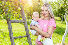 Young mother with baby picking apples from an apple tree Royalty Free Stock Image