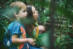 A young mother with a baby in a sling and little boy is walking in the jungle. A young mother with a baby in a sling and little boy is walking in the tropical Stock Photos