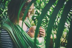 A young mother with a baby in a sling is travelling in the jungle. A young mother with a baby in a sling is travelling in the tropical forest Stock Image